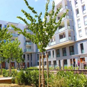 Groupe Cardinal - PARK HARMONY - @BBC Architectes