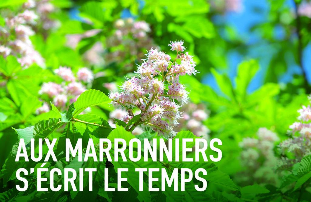 Groupe Cardinal la Verpillière - Aux Marroniers s'écrit le temps - Z Architecture